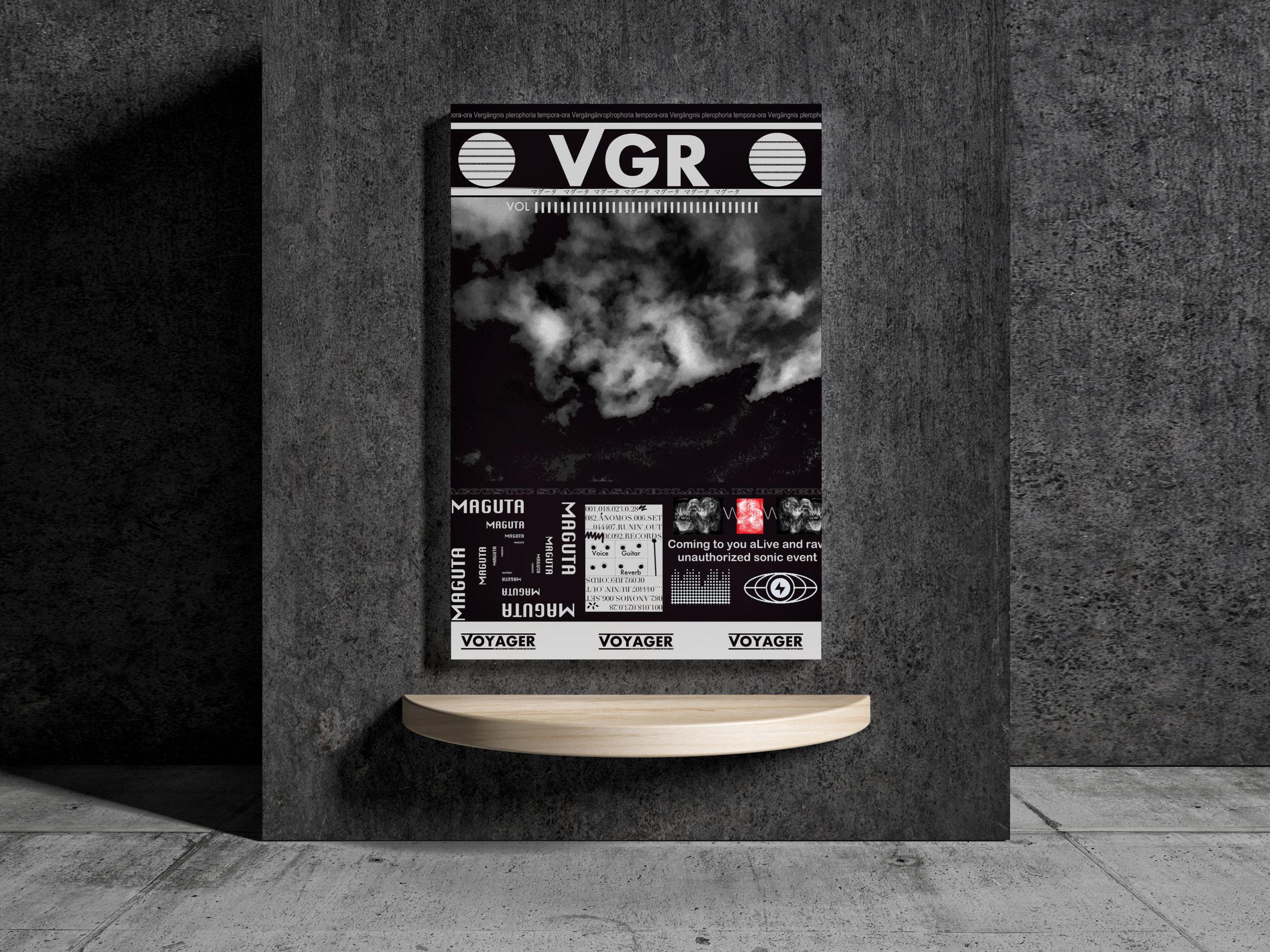 VGR Indoor Wallpaper Poster